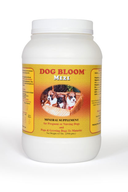 DOG BLOOM M121